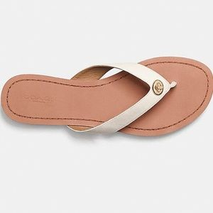 COACH Shelly Leather Sandal
